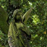 angel 1500972 1280 160x160 - Exorcizmus, vyhánění démonů, vymítání démonů, exorcismus